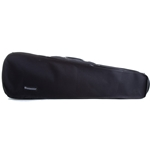 Eastman Protege CA1302 4/4 Violin Case